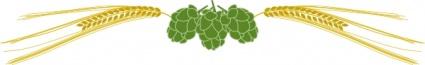 hops-and-barley-clip-art